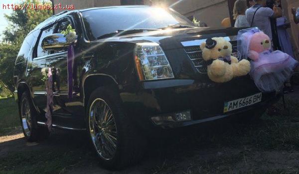 Куча девок в лимузине видео фото 391-900